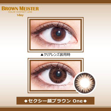 BROWN MEISTER(ブラウンマイスター) 1day 14.2mm(度なし/1箱30枚入り)