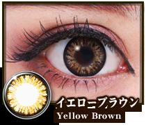 イエローブラウン、yellow brown